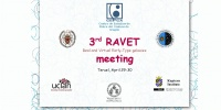 Poster of the Ravet Scientific Meeting in Teruel